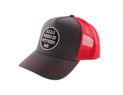 Statement Basecap ALL I NEED rot-anthrazit